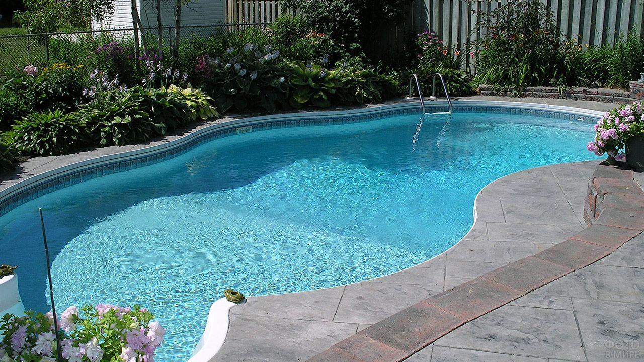 Цветник вдоль бортика бассейна на заднем дворе