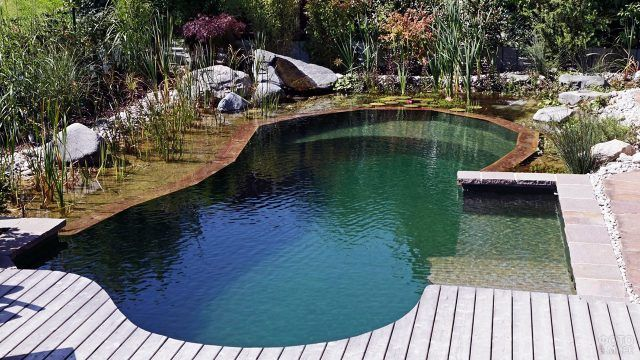 Модный озеленённый бассейн на даче