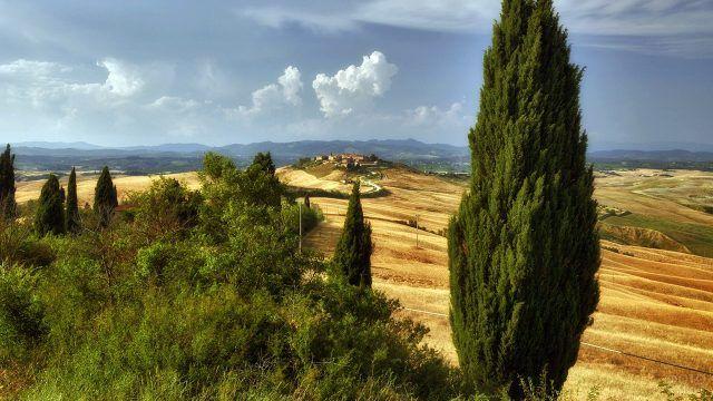 Европейский пейзаж с кипарисами