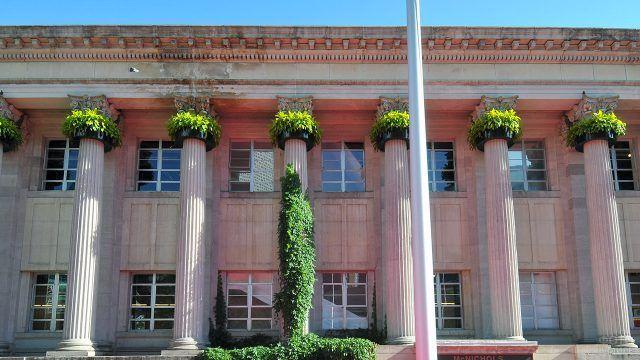 Классические колонны с зелёным плющом на фасаде двухэтажного здания