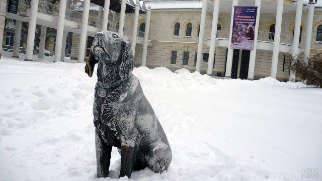 Памятник белому Биму в зимнем Воронеже