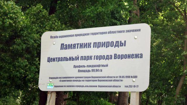 Парк - памятник природы в Воронеже