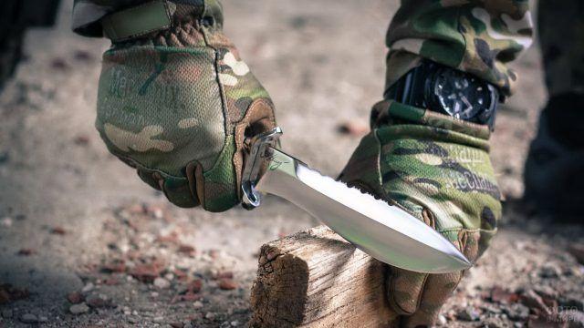 Нож в руках выживальщика