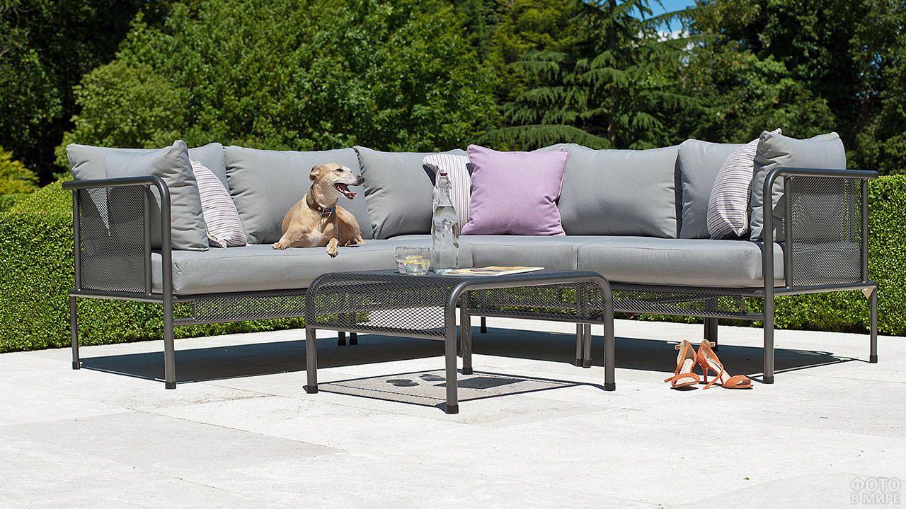 Серый металлический диван в зелёном саду