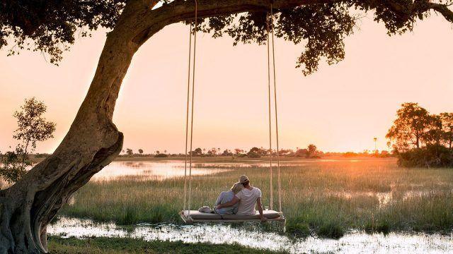 Пара на закате на качеялх под деревом