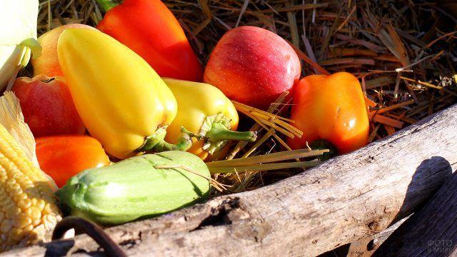Яркие осенние овощи в деревянном ящике с соломой