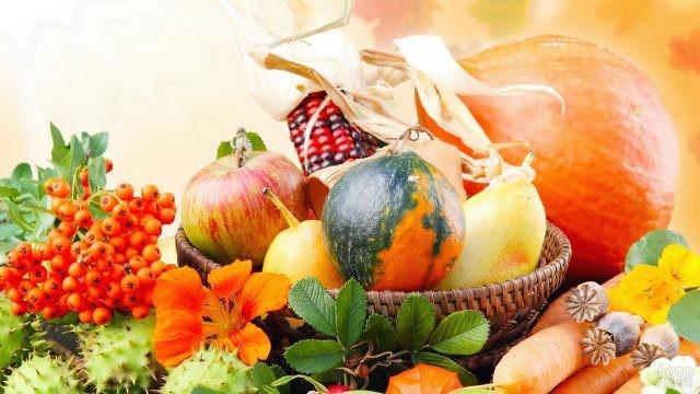 Осенний натюрморт из овощей