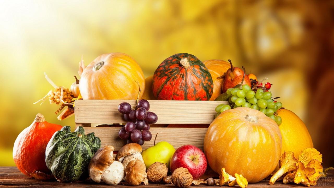 Осенний урожай - тыквы, грибы, яблоки и виноград