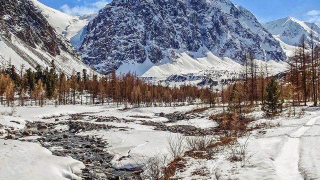 Осенние деревья в Уральских горах