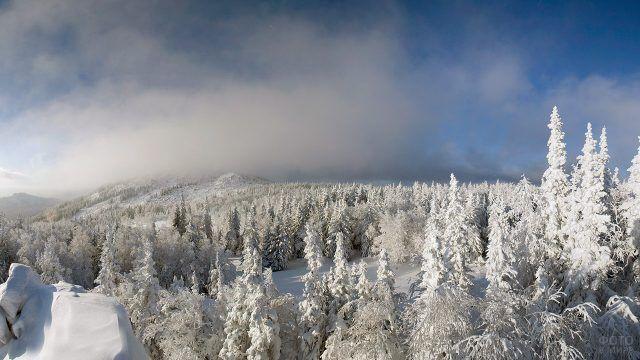 Зимний лес на вершине хребта Кумардак на Южном Урале
