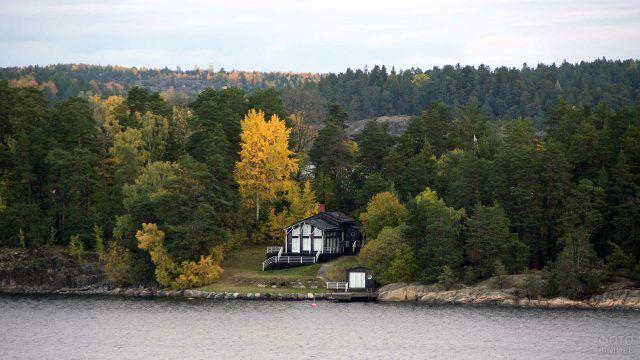 Загородный деревянный дом цвета венге под осенними деревьями леса на берегу реки