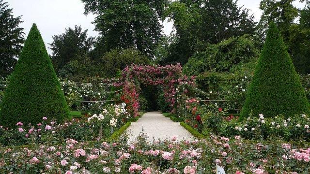 Розарий во французском парке Богатель