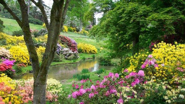 Знаменитый сад Леонардсли в Англии имитирующий дикую природу