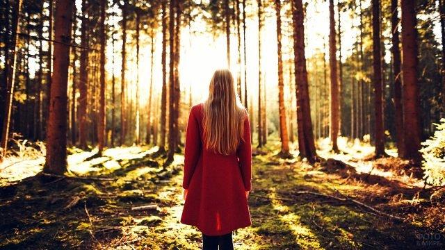 Блондинка в красном пальто в солнечном осеннем лесу