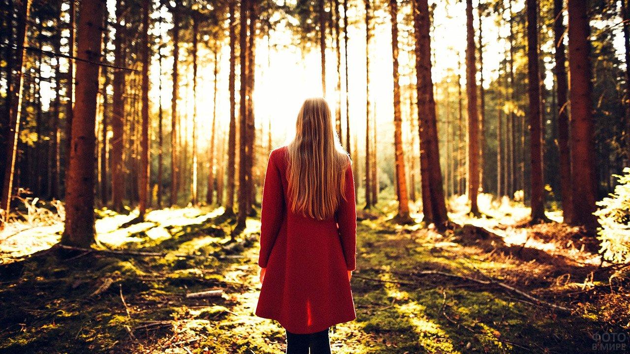 фото спиной в осеннем лесу стиль это
