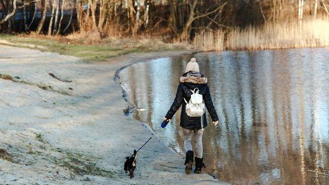 Девушка с собачкой идёт по берегу осеннего пруда