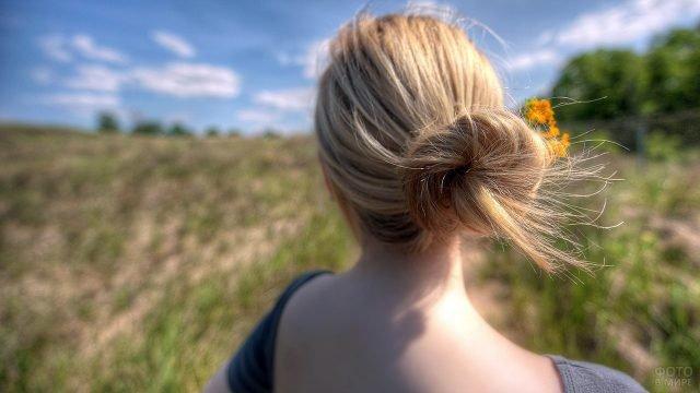 Затылок блондинки с забранными в пучок волосами на фоне осеннего поля
