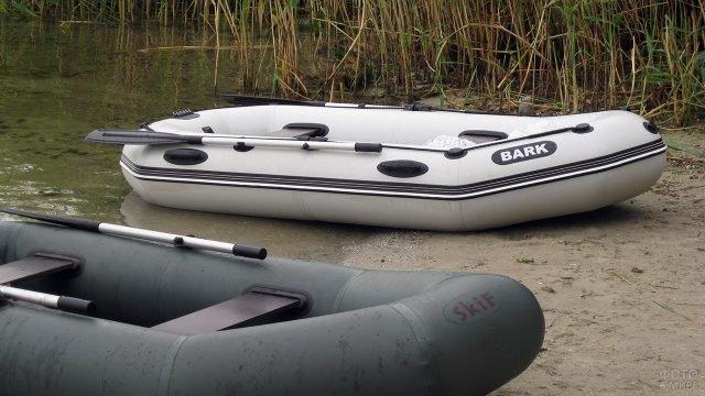Надувные лодки ПВХ на речном берегу у камышей