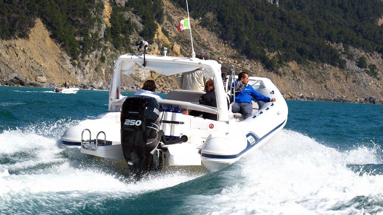 Прогулка на морской резиновой моторной лодке с мощным мотором меркурий 250