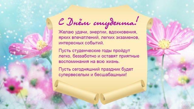 Розовые ромашки на голубом фоне и свиток с поздравлением студентам