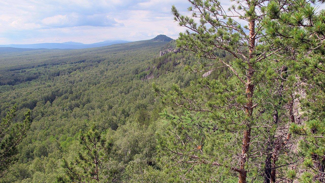 Гора Круглая сопка на хребте Большой Таганай в зелени национального парка
