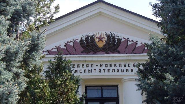 Ели на фоне социалистического фронтона в Северо-Кавказком городе
