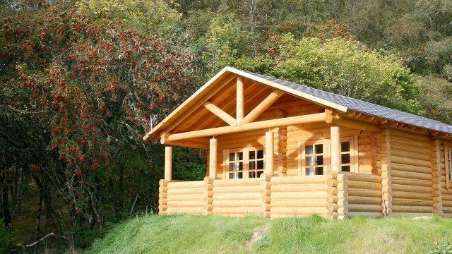 Солнечная лужайка с бревенчатым домиком под рябиновыми гроздьями