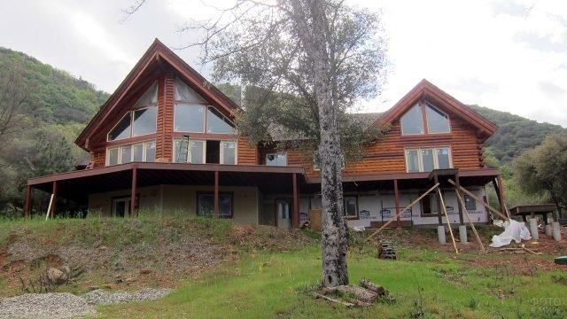 Современный дом из оцилиндровки на склоне холма с высоким деревом