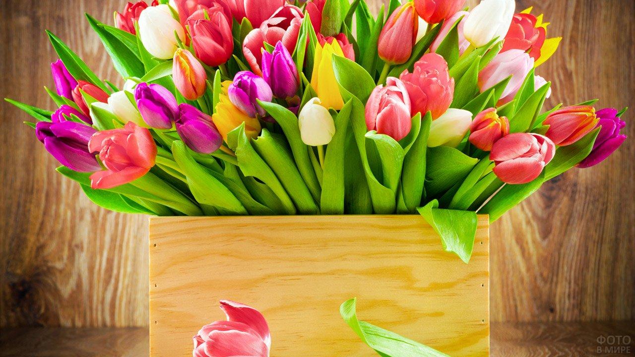 Букет тюльпанов к 8 марта в подарочном фанерном ящичке