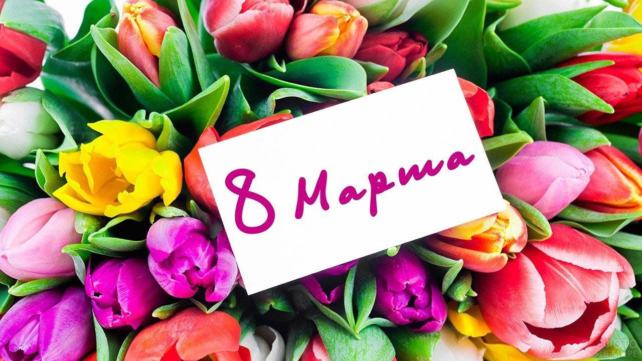 Карточка с 8 марта на фоне пёстрого букета тюльпанов