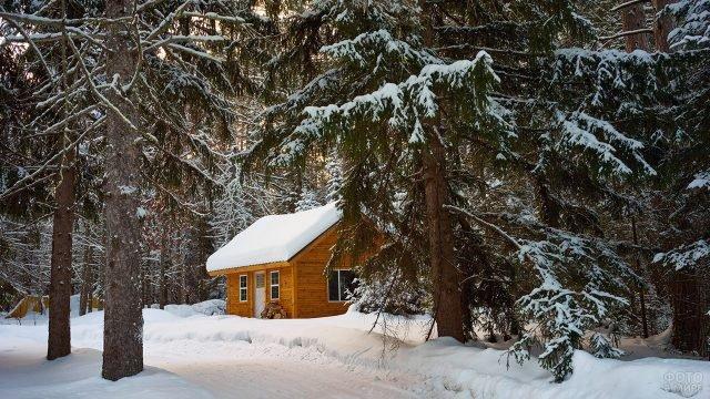 Заснеженная деревянная избушка в уютном уголке леса