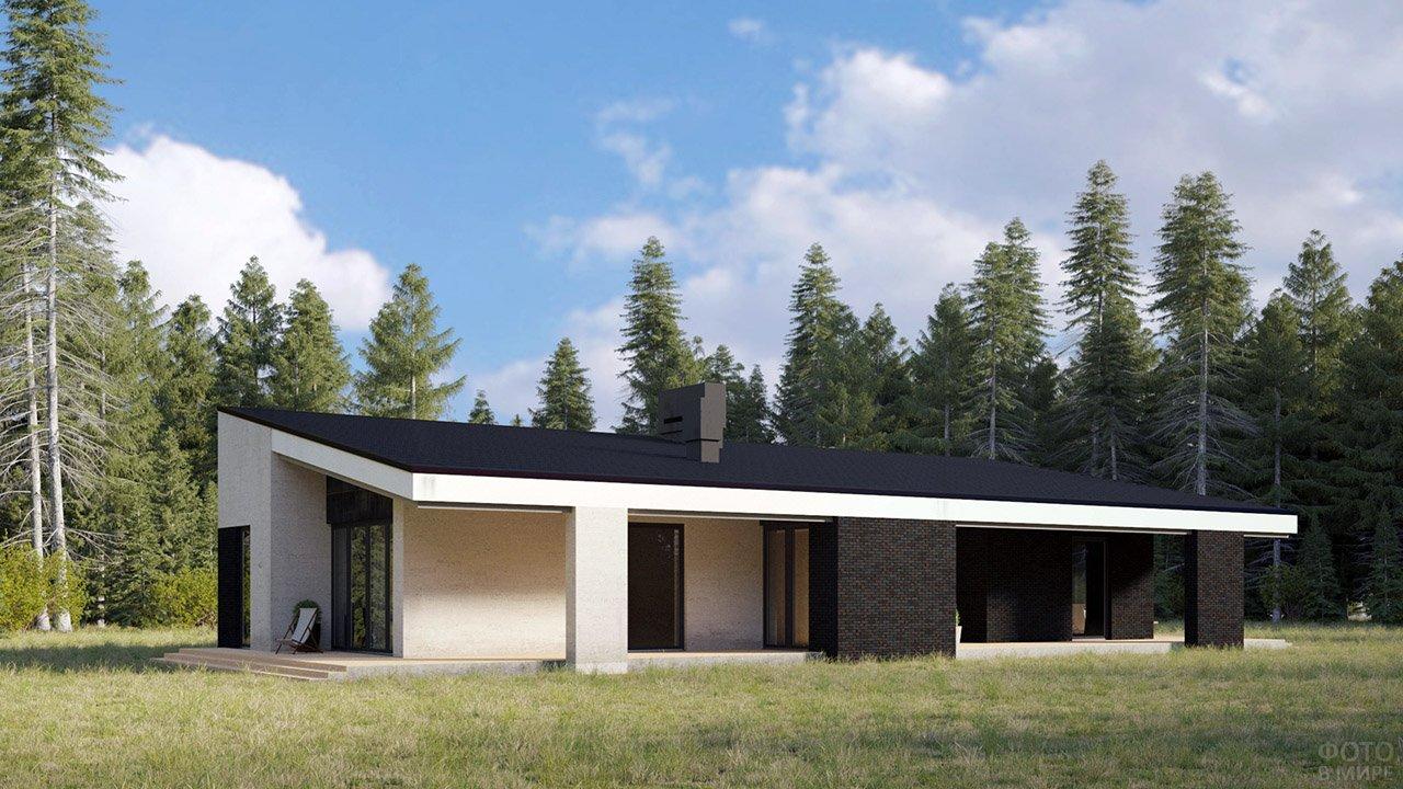 Дом в стиле хайтек с односкатной крышей на опушке леса