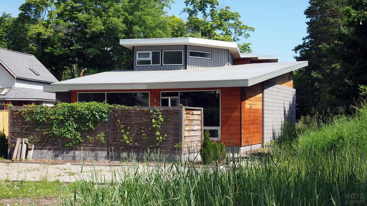 Садовый домик с односкатной крышей и мезонином среди летней зелени