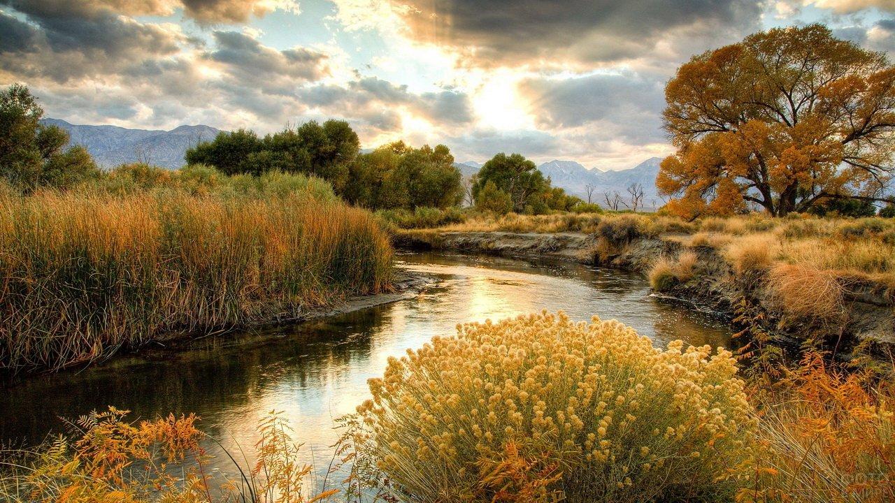 Берег реки осенью