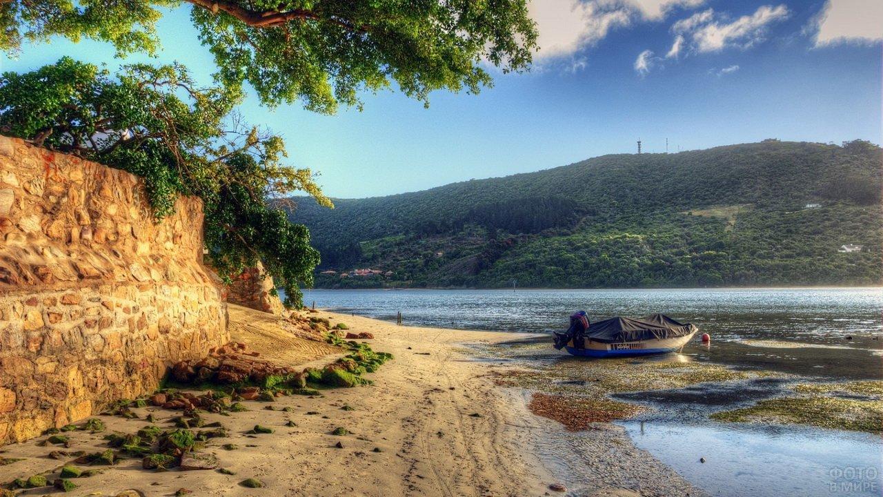 Катер рыбаков на берегу реки