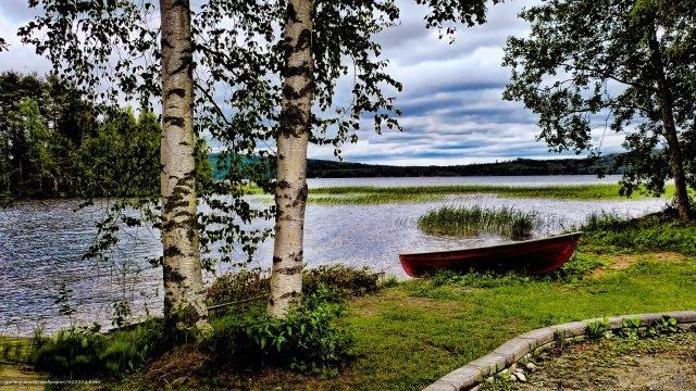 Лодка и березы на берегу реки