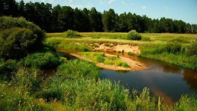 Небольшая речка с островком