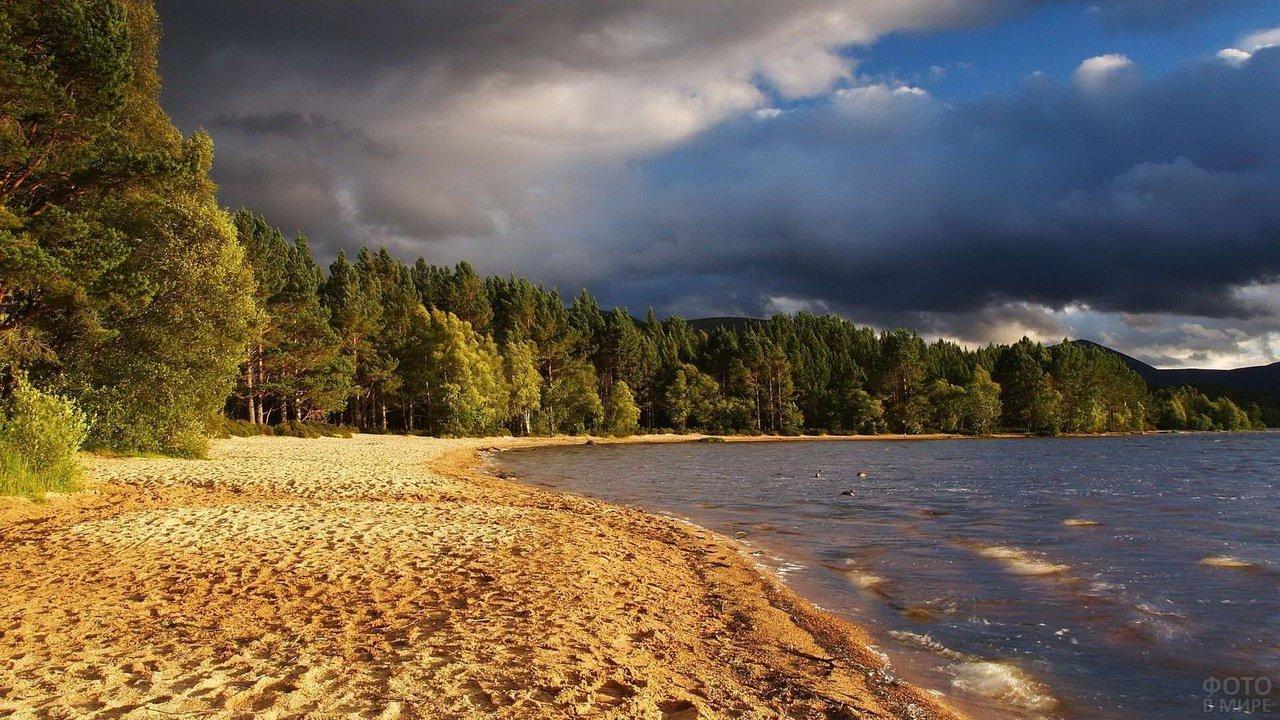 Песчаный берег реки