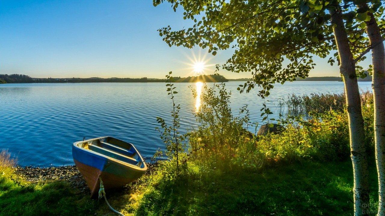 Рыбацкая лодка и осины у реки