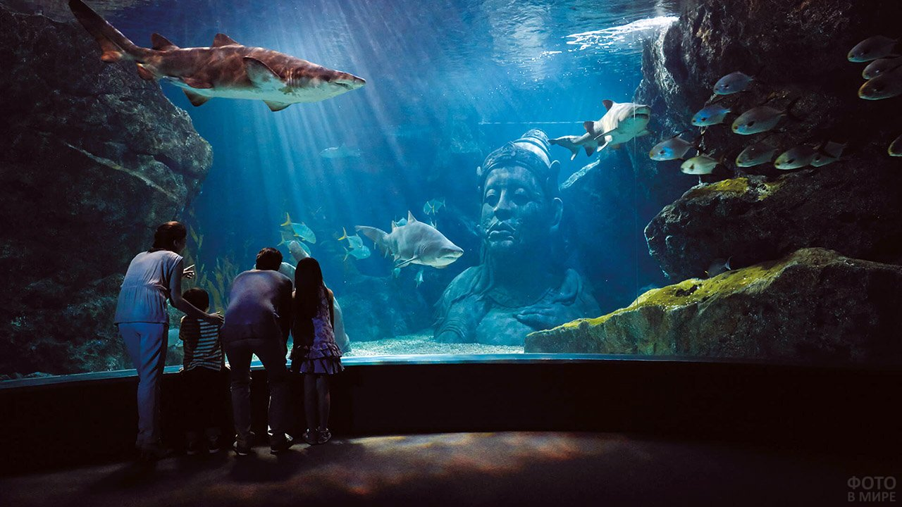Туристы в океанариуме Сиам Оушен Ворлд