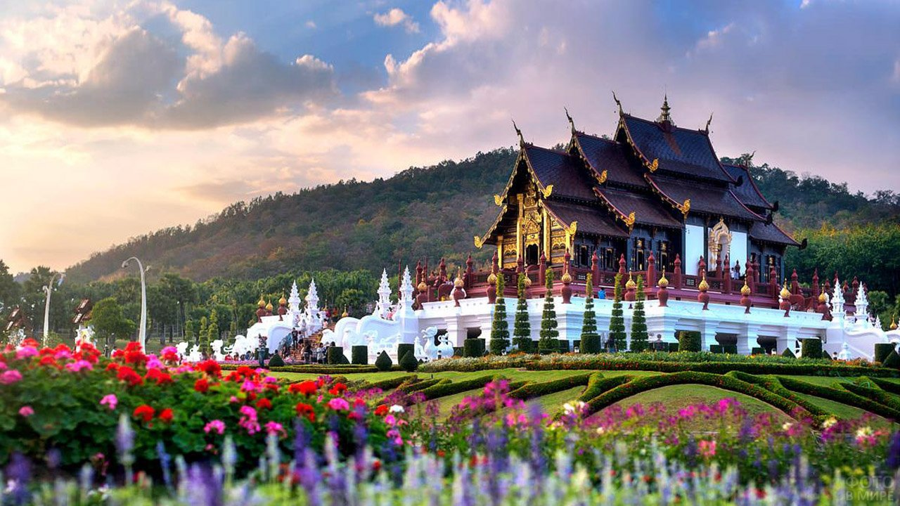 Вечерний пейзаж в цветущем парке Чианг Май