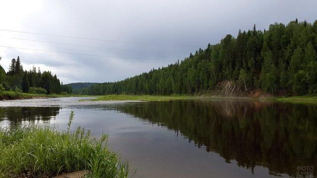 Хвойный лес на берегах уральской реки