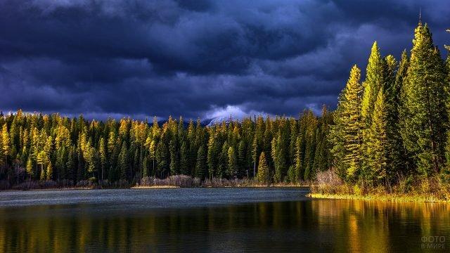 Лес на берегу горного озера в солнечных лучах, пробивающихся через тучи