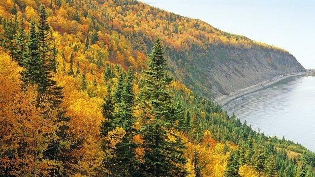 Осень в сибирской тайге