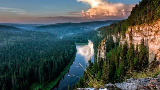 Река в хвойном лесу в Пермском крае
