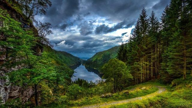 Тропинка к озеру среди леса