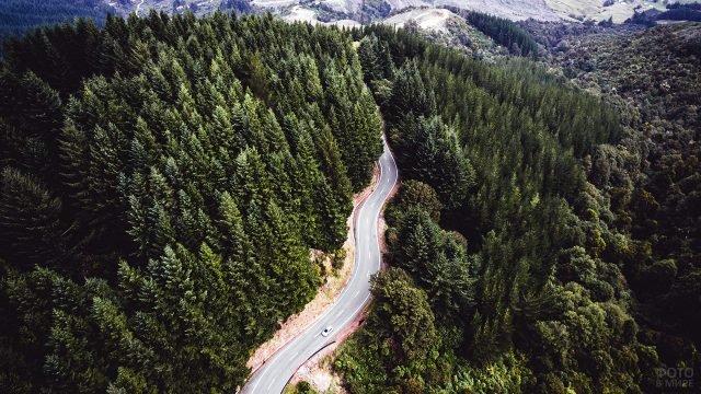 Вид сверху на автодорогу, ведущую сквозь хвойный лес