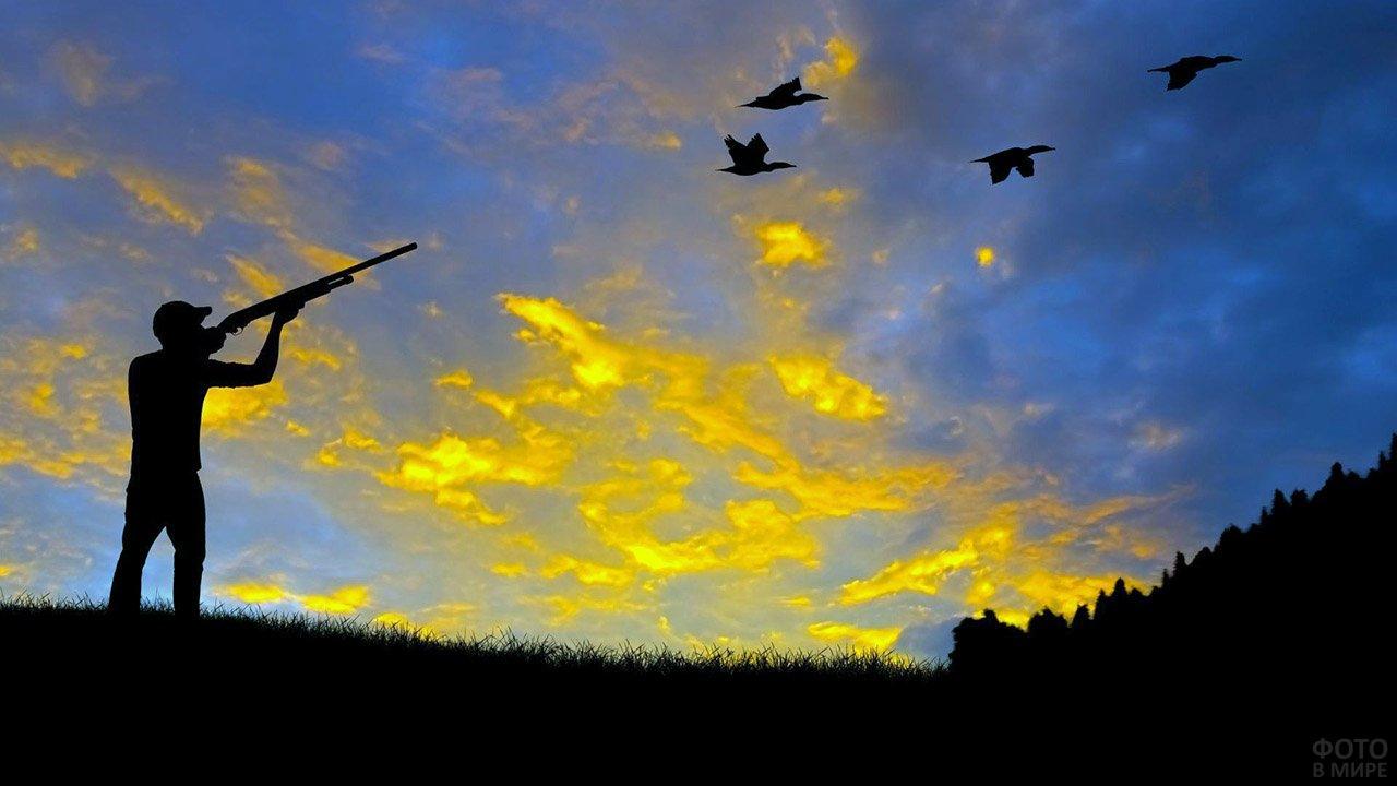 Силуэт охотника с ружьём и летящей стаей уток на фоне рассвета