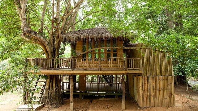 Дом из бамбука в тропиках