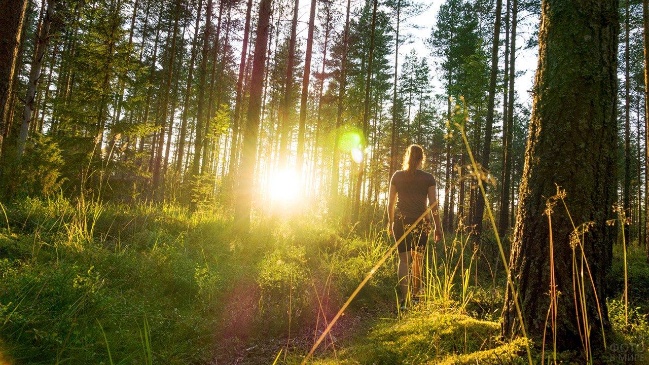 Девушка идёт по тропинке солнечного летнего леса